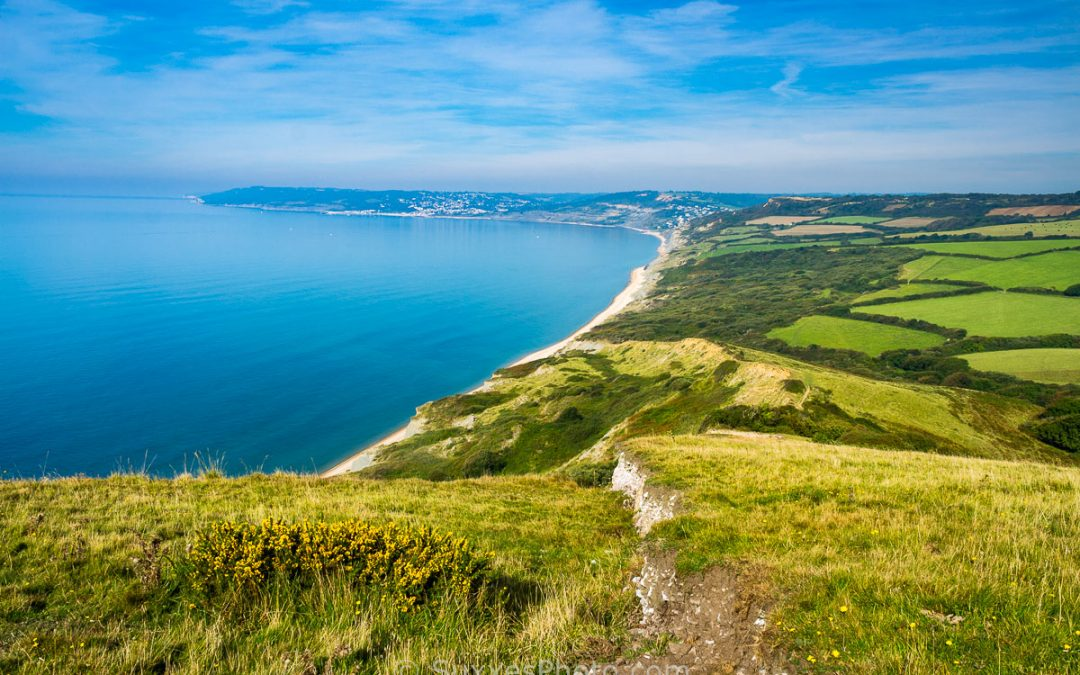 Why Visit Dorset For Your Next Holiday?